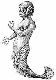 Русалка, демонстрировавшаяся на ярмарке в Париже в 1758 году. Утверждают, что рисунок сделан с натуры.