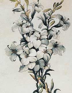"""Неизвестный художник. """"Лилии Франции"""" (шесть силуэтов семьи Бурбонов). 1815 год."""